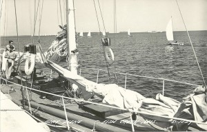 History of Alibi Marina